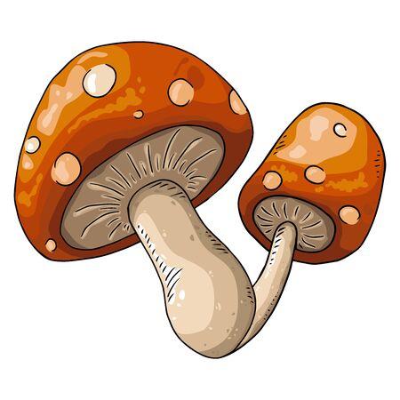 Mushroom icon. Vector of mushrooms. Hand drawn mushroom
