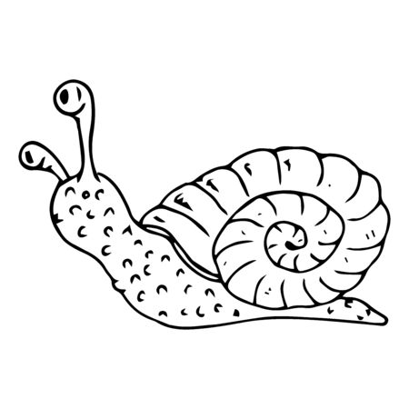 Snail doodle. Vector illustration of a cartoon snail. Hand drawn funny snail.