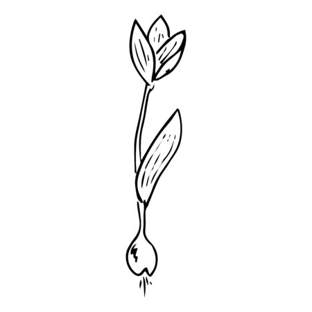 Bulbous flowers for planting icon. Vector illustration of flowers for spring planting. Hand drawn flowers for planting. Ilustrace