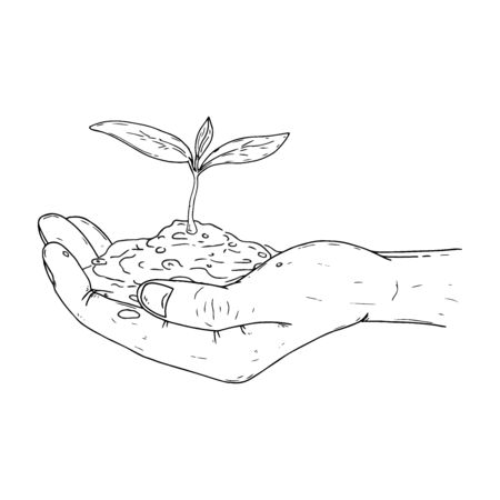 Human palms hold a young sprout icon. Vector illustration a hand holds a handful of earth with a flower. Mans hands hold a handful of earth with a young plant.