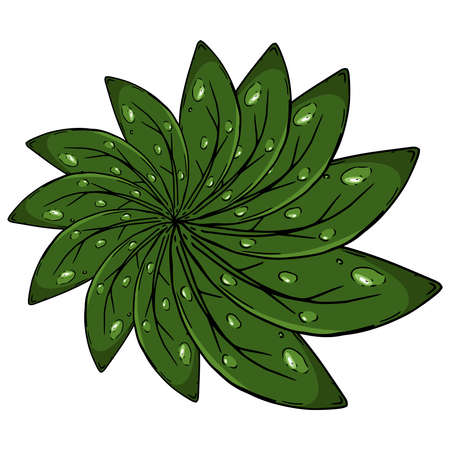 Flower of leaves with drops icon . Vector illustration of a pattern of leaves. Hand drawn leaves with drops of water