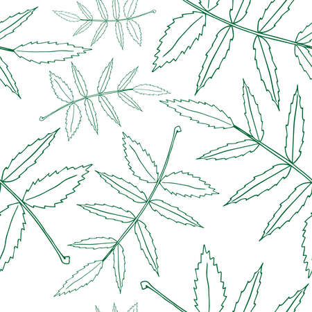 Set leaves seamless pattern. Autumn, spring leaves. Vector illustration of a seamless pattern of set leaves. Hand drawn set of leaves.