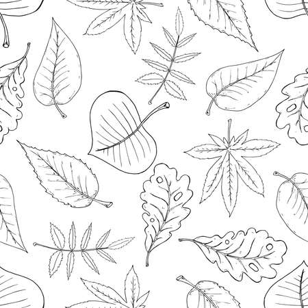 Leaves seamless pattern. Autumn, spring leaves. Vector of a seamless pattern of leaves.