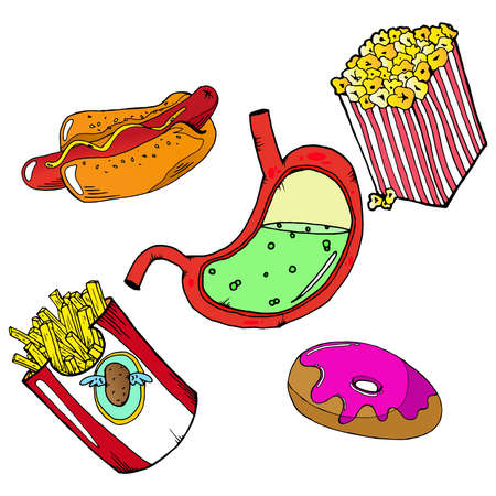 Fast food set. Sick stomach and fast food. Vector illustration set of hotdog, french fries, kerchup.