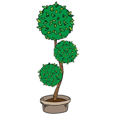 Flower tree in a pot. Home plant. Vector illustration of a home flower tree in a pot.