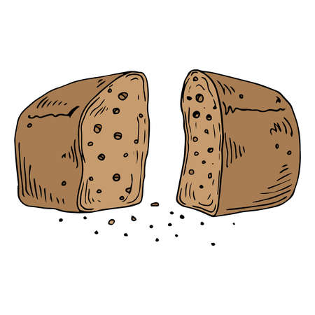 Loaf of bread cut in half. Bread with crumbs. Vector illustration of bread. Hand drawn bread.