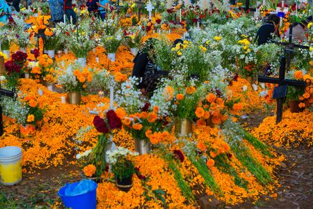 In many places in Mexico on the day of the dead the pantheons are large gardens.