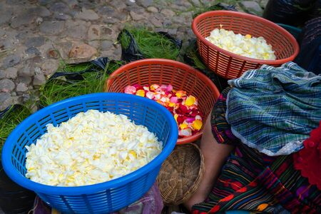 A Mayan woman is showing her flower petals at the Chichicastenango market in Guatemala. Foto de archivo