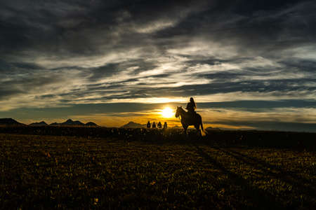 The woman is riding the horse at sunset.