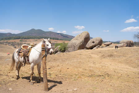 The horse and the giant stones of Tapalpa Jalisco Mexico. 免版税图像
