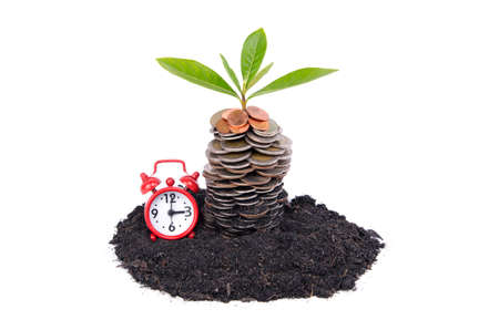 investment banking: Coins in soil with young plant and Alarm clock. Money growth concept Stock Photo