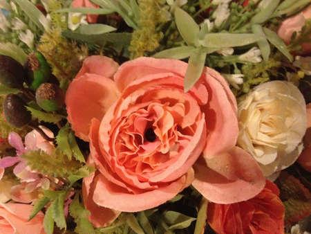 glower: flower