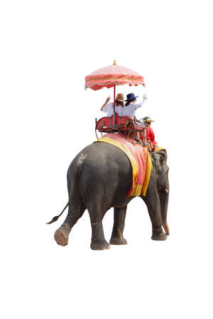 Tourists on an ride elephant tour of the ancient city isolated on white background with clipping path