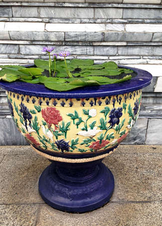water lilly  flower vase