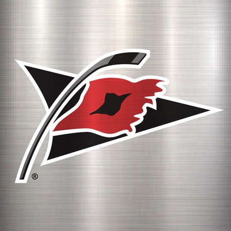 carilina hurricanes NHL metal