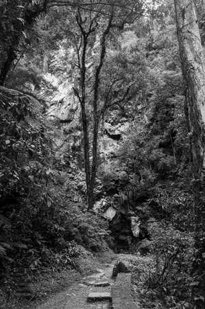 devils cave entrance Brazil walkway outdoors geology scenic black white Imagens