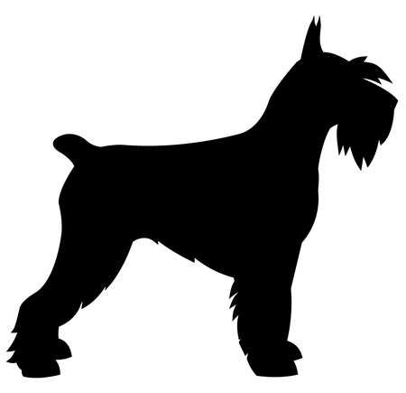 schnauzer dog animal breed puppy  silhouette pet illustration