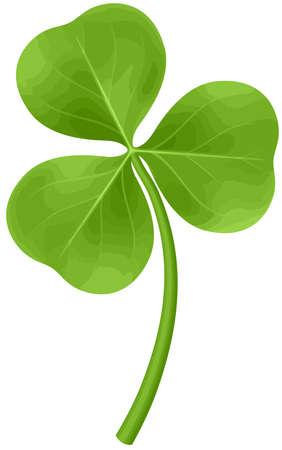 four leaf clover shamrock green st patricks day luck illustration