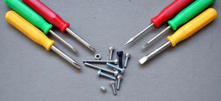 screw driver: mini screw driver set with fasteners
