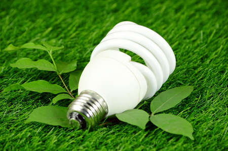 Energy Saving Light Bulb and Green Environmental Concept. Stock Photo