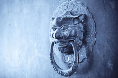 close up of the lion knocker on the old door photo
