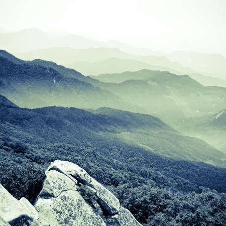 forest and faraway mountains, beautiful scenery. photo