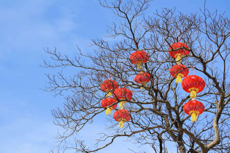 sky lantern: many red lanterns hanging on the tree for celebrations  Stock Photo