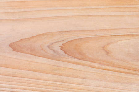 wood texture of the fir board photo
