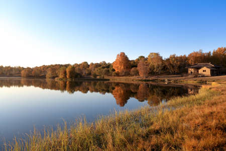 autumn landscape of the lake at morning photo