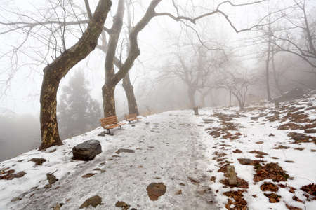 mountain trail and chairs in winter with fog photo