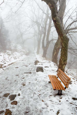 wintry landscape: winter mountain trail and a chair in the fog