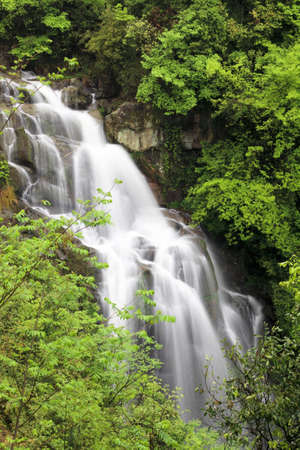 ecological environment: closeup of the waterfall in jungle,original ecological environment Stock Photo