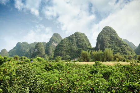 karst: beautiful karst landform with the orange field in yangshuo, China Stock Photo