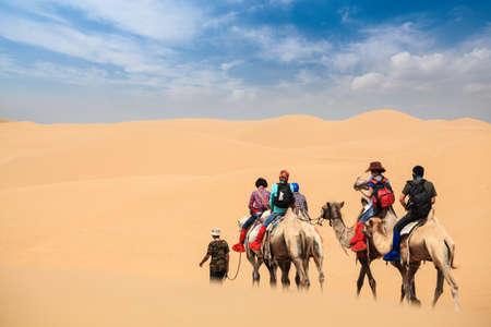 camel caravan going through the desert,inner mongolia,China photo