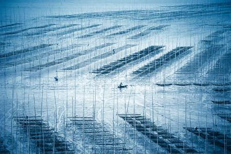 fischerei: Wattenmeer Landschaften Meer sedge Bauernhof