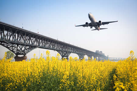 spring aircraft on the rapeseed field with yangtze river bridge photo