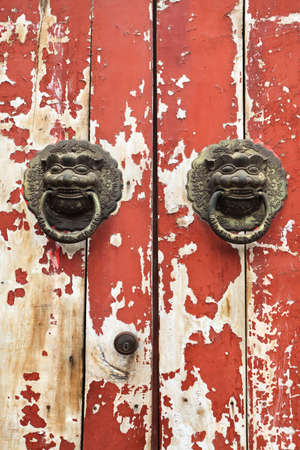 closeup of the mottled old door and knocker photo