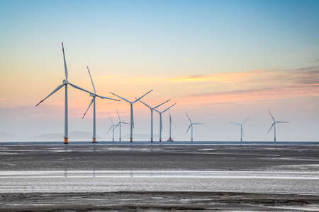 energy fields: wind power farm on the coastal mud flat in sunrise