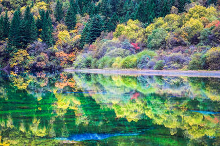 colorful lakes in autumn at jiuzhai valley national park, sichuan, China.