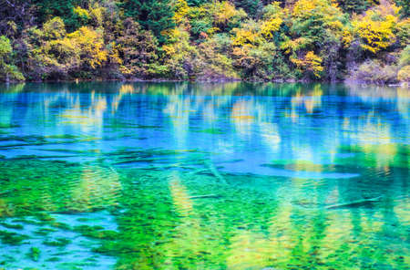 brilliant colors: brilliant colors on the lake surface at jiuzhai valley national park, sichuan, China.