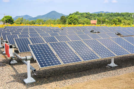 solar panels and sunflower farmland background ,renewable energy concept  photo