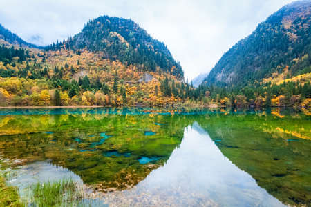 autumn fairy tale landscapes in jiuzhaigou valley national park , China.