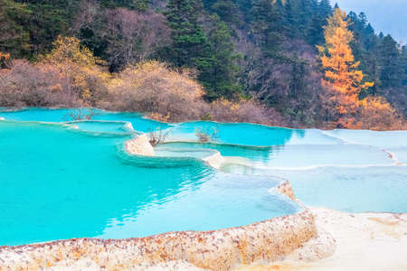 calcification: beautiful clear water with blue calcification pond  , huanglong national park in autumn  ,China
