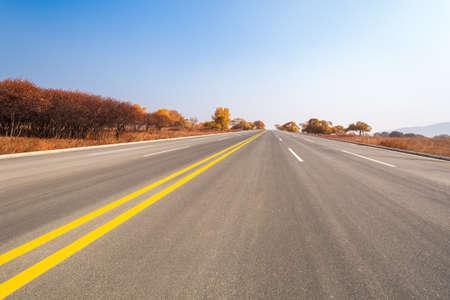 long road: long road across the prairie in autumn