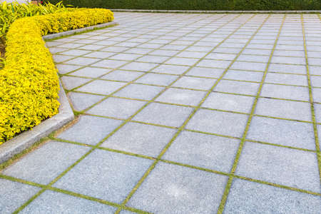 granite park: granite floor in a park with garden plant