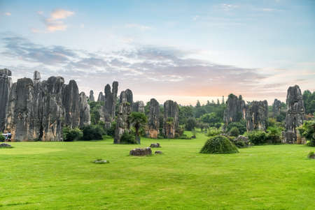 stone forest scenic national park, kunming city ,yunnan province, China. Standard-Bild
