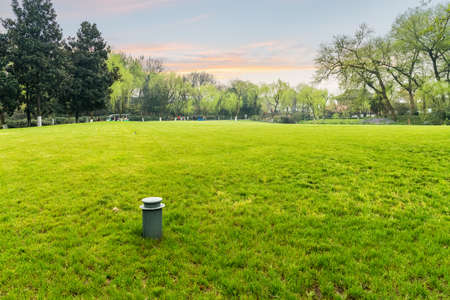 green lawn beside the west lake in spring, beautiful hangzhou scenery at dusk Stock Photo