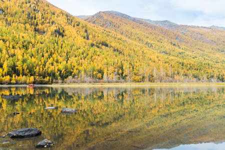 Autumn forest reflected in beautiful lake, Kanas, Xinjiang, China