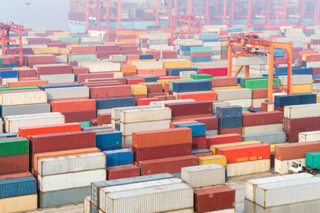 container yard in early morning on shanghai port, modern logistics background