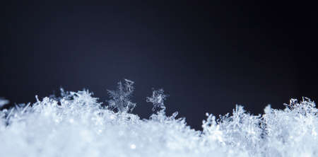 natural snowflakes on snow, photo real snowflakes during a snowfall, under natural conditions at low temperature 版權商用圖片